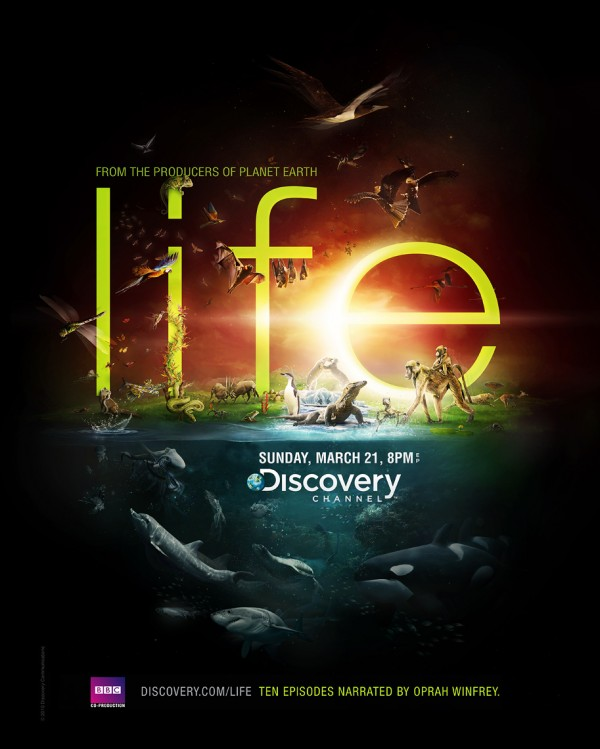 Flyer Discovery Channel